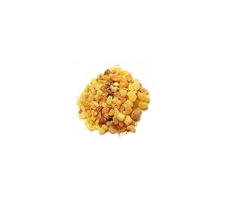 Bee Gum