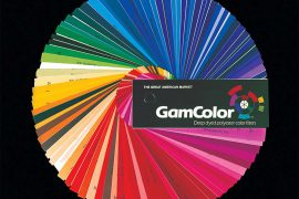 Gam Color Naked Cosmetics Sheet