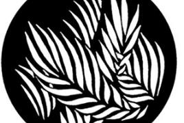 #77730 Palm